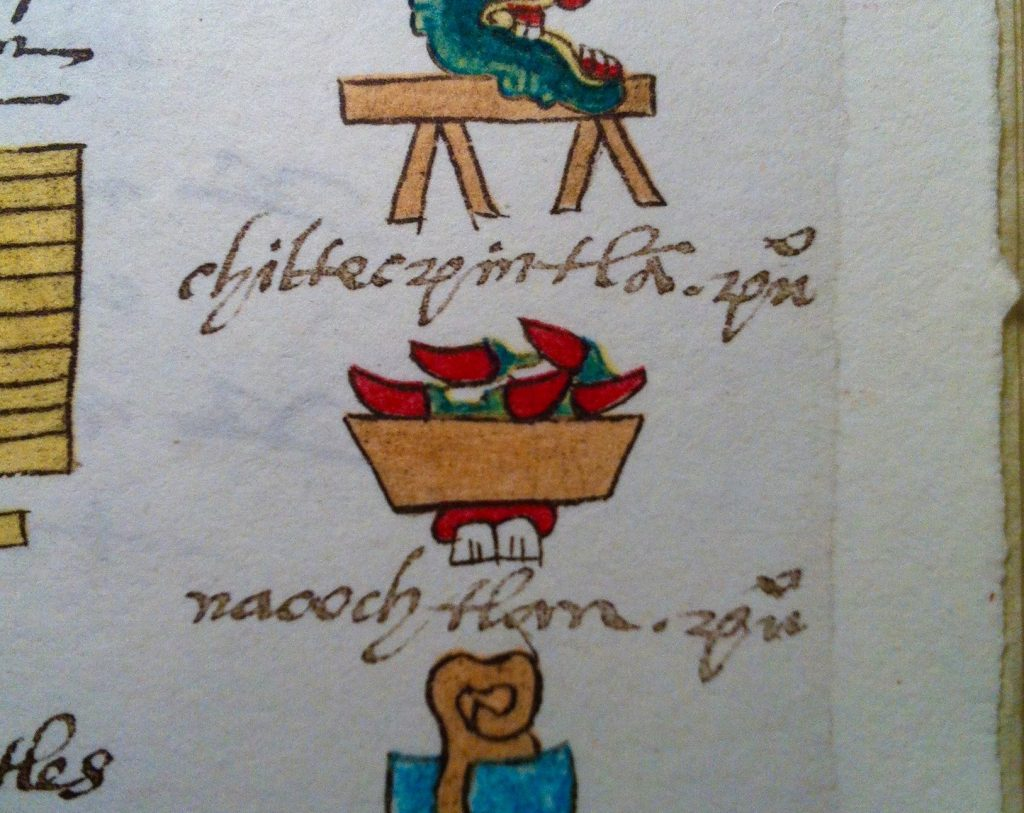Rajas Poblanas are native to Mexico, as shown here in the Codex Mendoza