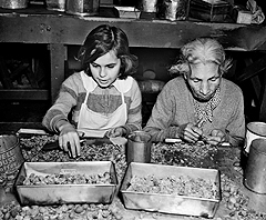 My Bourbon Pecan Pie recalls Pecan Shellers in San Antonio, working for starvation wages.