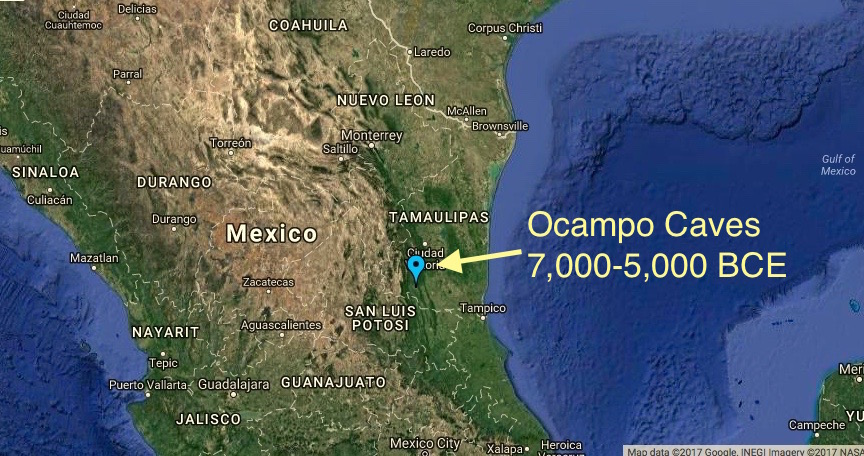 Acorn Squash originated in Ocampo, Tamaulipas, Mexico, just 300 miles south of Brownsville, Texas